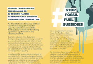 Statement: Business Organisations and NGOs call on EU decision-makers to remove public subsidies to fossil fuel consumption