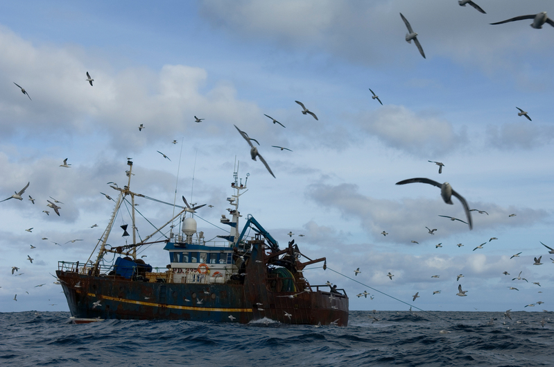 Reaction to EU Fit for 55: Energy Taxation Directive and Fossil Fuel Subsidies for the Fishing Industry